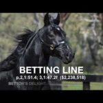 Betting Line - Paddock Footage