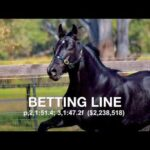 Betting Line - Promotional Video