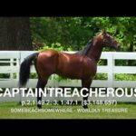Captaintrecherous - Paddock Footage