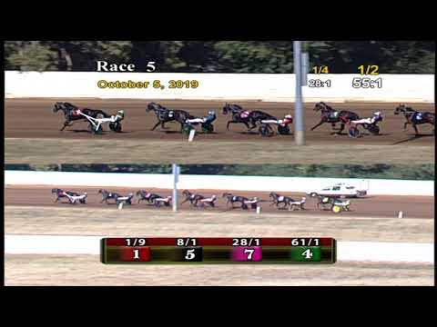 Tall Dark Stranger - $68,750 International Stallions Stakes
