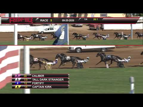 Tall Dark Stranger -$250,000 Kentucky Sires Stakes Final
